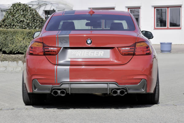 00099263 2 Tuning Rieger