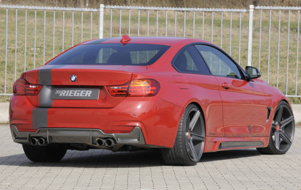 00099263 5 Tuning Rieger
