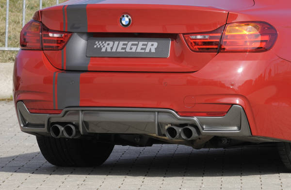 00099263 6 Tuning Rieger