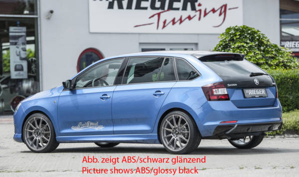 00099278 5 Tuning Rieger