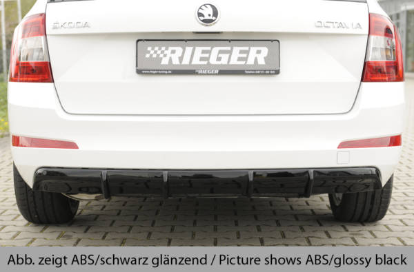 00099292 4 Tuning Rieger