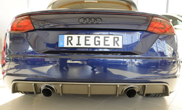 00099366 3 Tuning Rieger