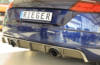 00099366 4 Tuning Rieger