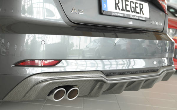 00099610 6 Tuning Rieger