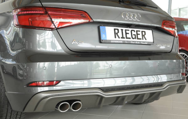 00099610 8 Tuning Rieger