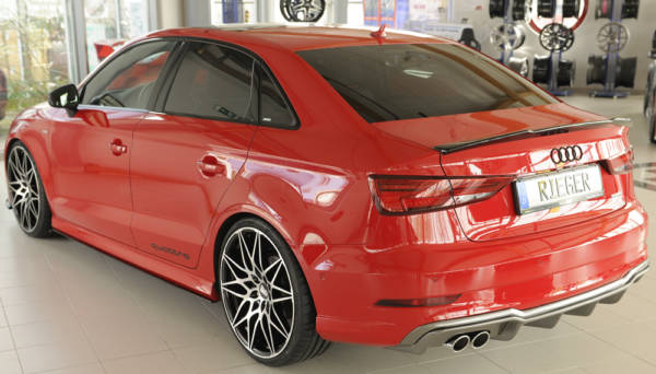 00099614 6 Tuning Rieger
