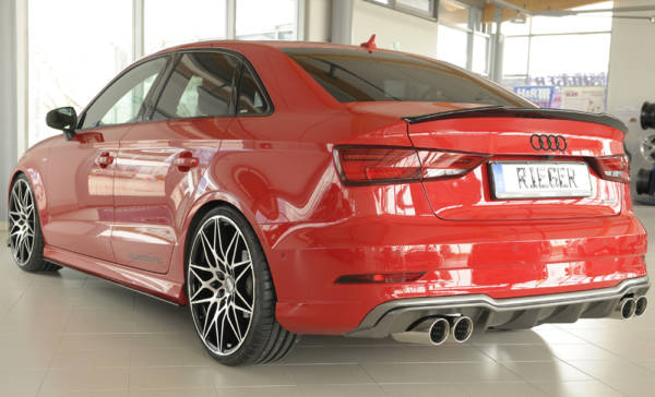 00099616 4 Tuning Rieger