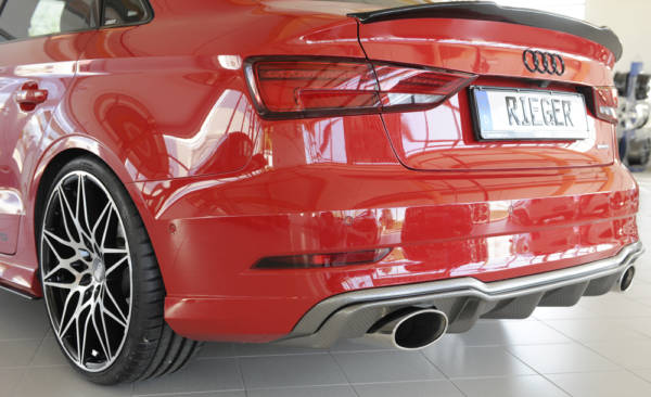 00099617 3 Tuning Rieger