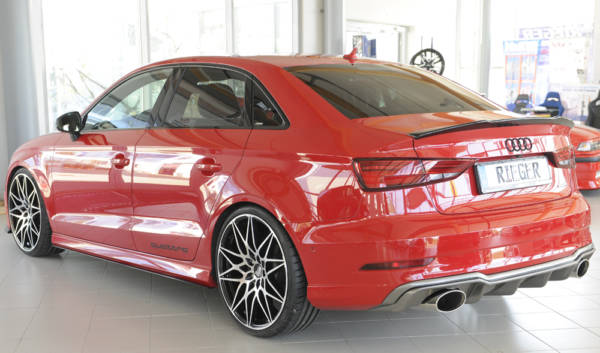 00099617 4 Tuning Rieger