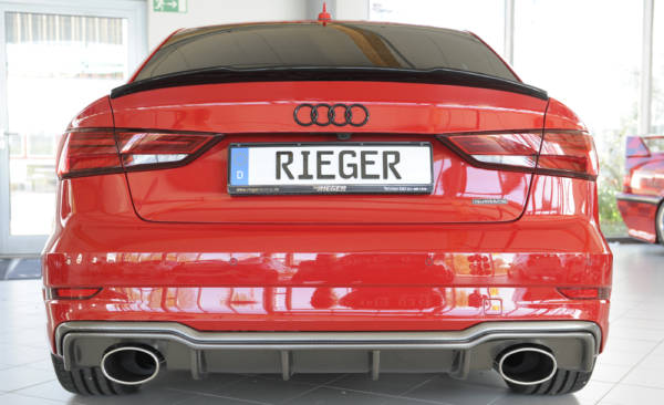 00099617 7 Tuning Rieger