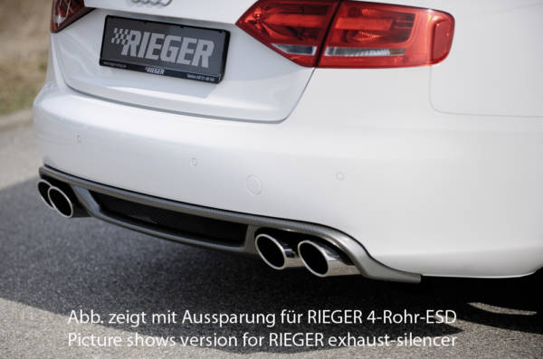00099841 3 Tuning Rieger