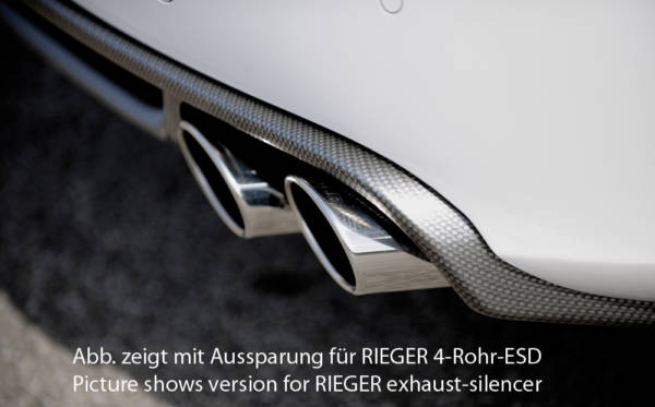 00099841 4 Tuning Rieger