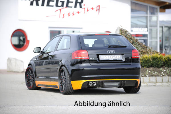 00099863 2 Tuning Rieger