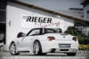 00099865 8 Tuning Rieger