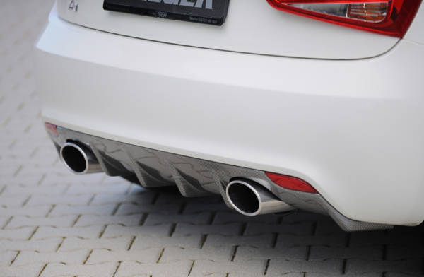 00099878 2 Tuning Rieger