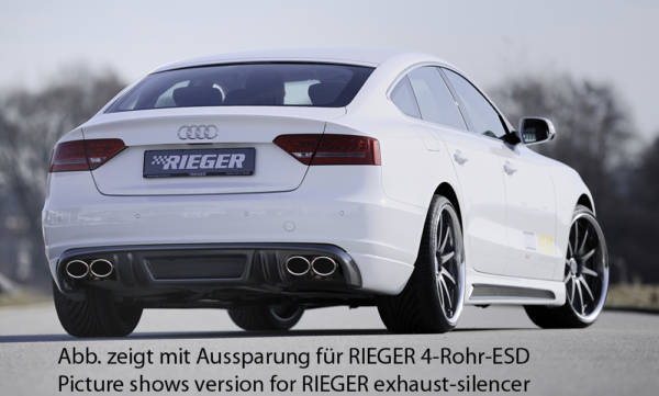 00099882 2 Tuning Rieger