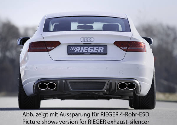 00099882 3 Tuning Rieger