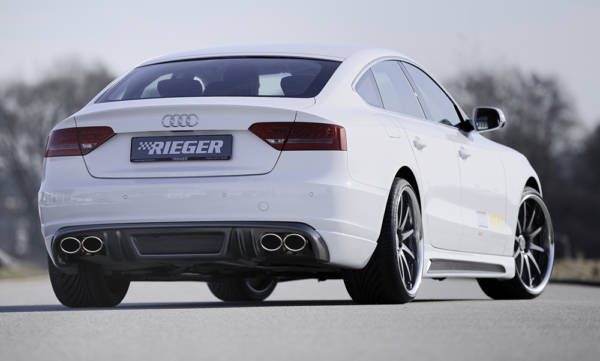 00099884 2 Tuning Rieger