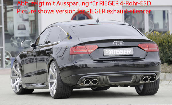00099885 3 Tuning Rieger