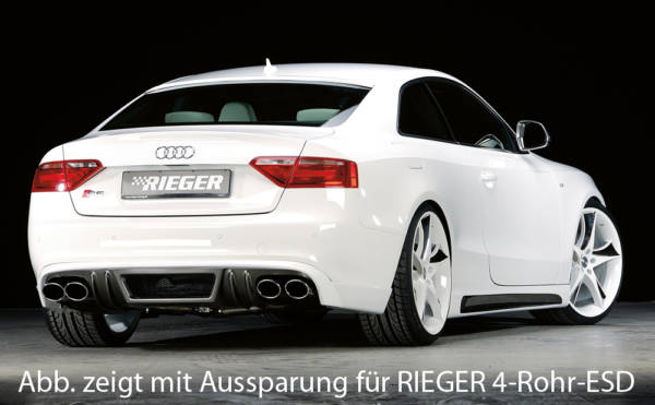 00099889 2 Tuning Rieger