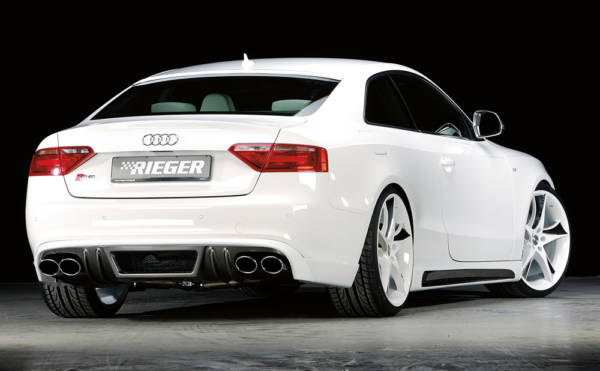 00099890 2 Tuning Rieger