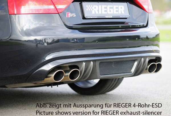00099891 3 Tuning Rieger