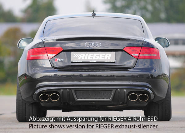 00099894 2 Tuning Rieger