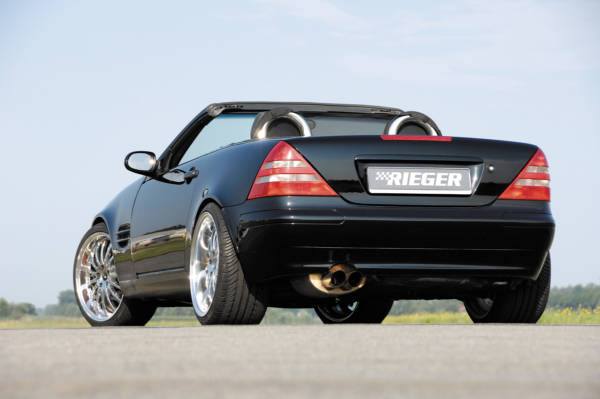 00197873 3 Tuning Rieger