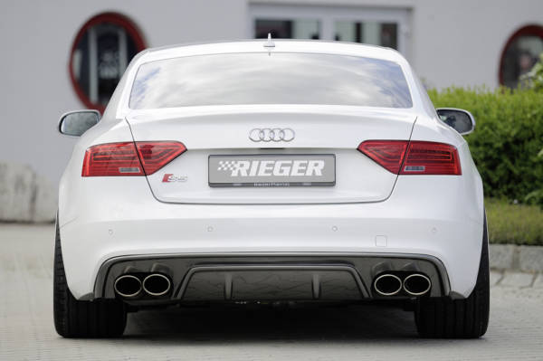 00239254 3 Tuning Rieger