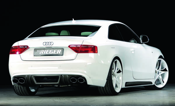 00243898 5 Tuning Rieger