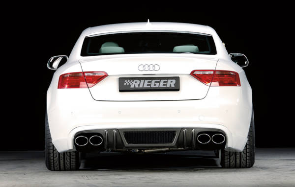 00243898 6 Tuning Rieger