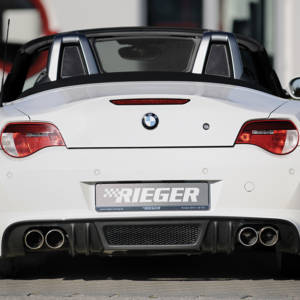 00299306 2 Tuning Rieger