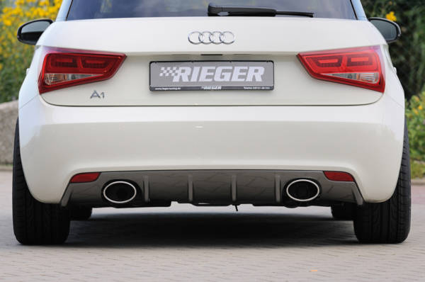 00300210 2 Tuning Rieger
