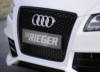 00301355 2 Tuning Rieger
