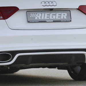 00302720 2 Tuning Rieger
