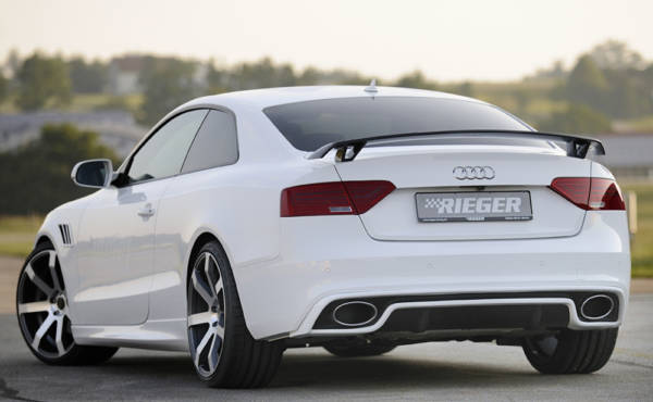 00302720 5 Tuning Rieger