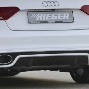 00302722 2 Tuning Rieger