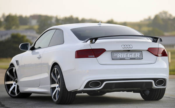 00302722 5 Tuning Rieger