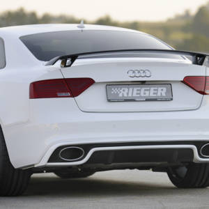 00303212 2 Tuning Rieger