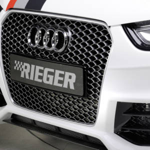 00303351 2 Tuning Rieger
