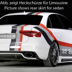 00303363 2 Tuning Rieger