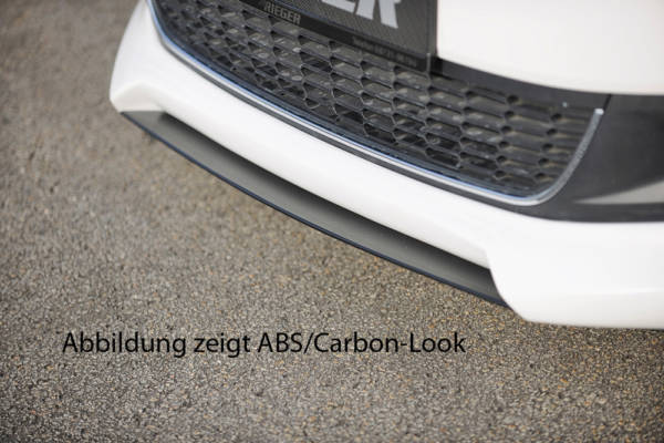 00047202 Tuning Rieger