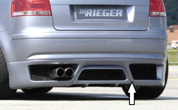 00056706 Tuning Rieger
