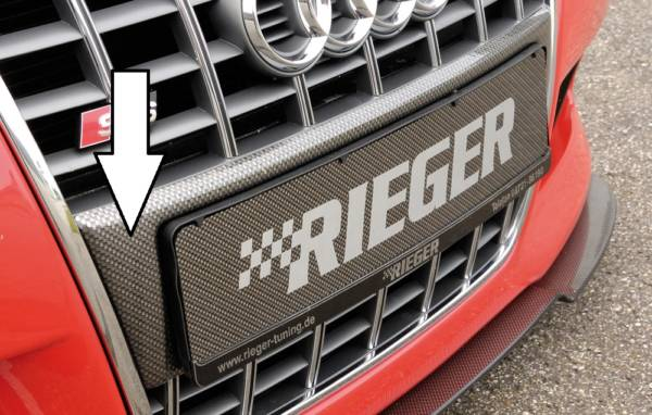 00099039 Tuning Rieger