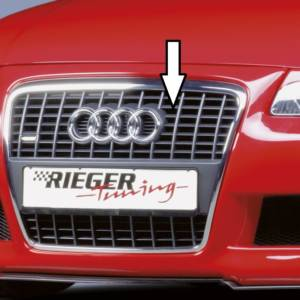 00165028 Tuning Rieger