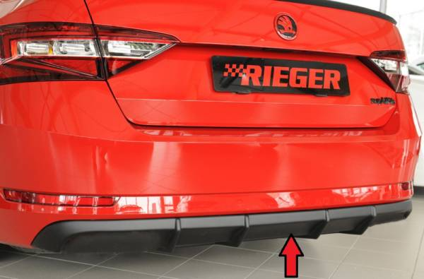 00079046 Tuning Rieger