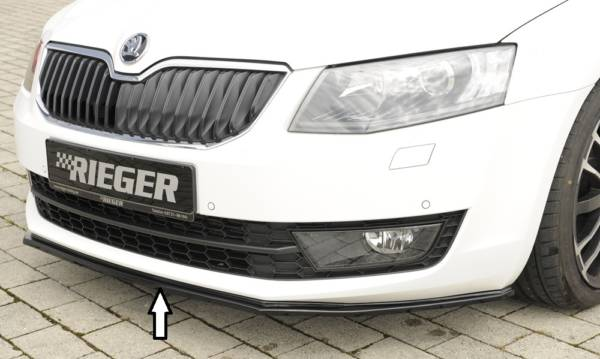 00088107 Tuning Rieger