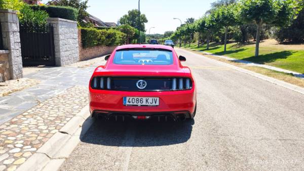 Mustang 1 Tuning Rieger