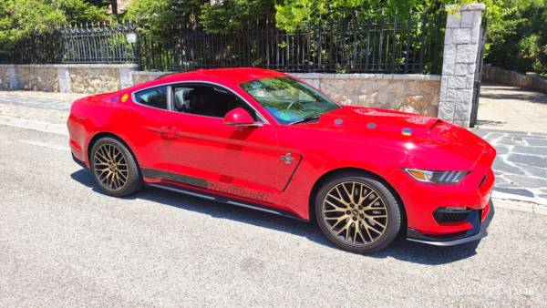 Mustang 4 Tuning Rieger
