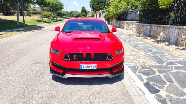 Mustang 6 Tuning Rieger